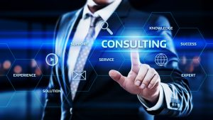 Shapiro Consulting Group - Consulting